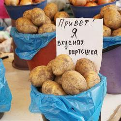 Продукты в Казани: где дешевле и вкуснее?