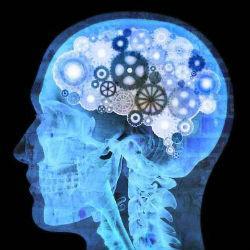 Самый короткий тест на интеллект: 3 вопроса