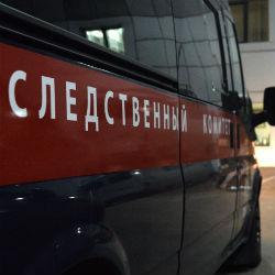 СК раскрыл подробности массовой резни в посёлке