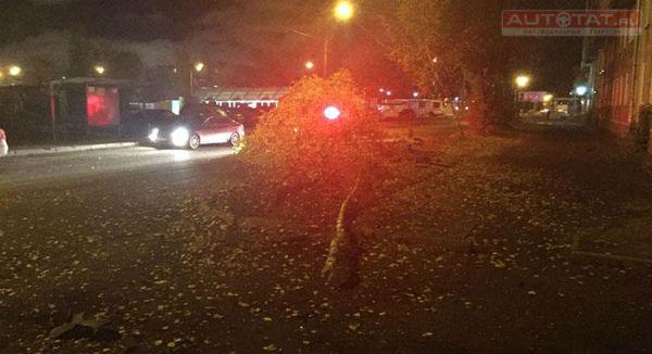 Ночная погоня в Казани: водитель BMW снес 3 дерева, вылетев с дороги (ФОТО)