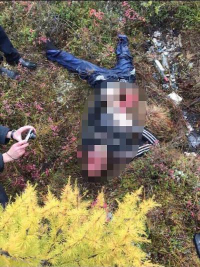 В Татарстане пользователи сетей шокированы снимками разорванного кабаном грибника (ФОТО)