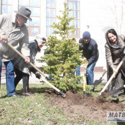 В парке Татарской филармонии посадят именные деревья