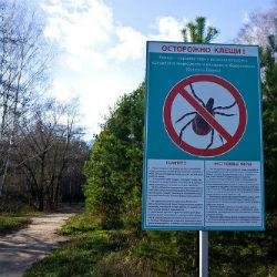 Вирус энцефалита выявлен в семи клещах в Татарстане