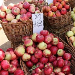 Яблоки-2017: много, но почему-то дорого