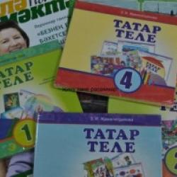 ВКТ выступает против вытеснения татарского языка из сферы образования