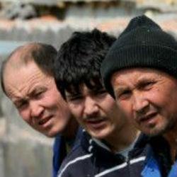 МВД РФ: «Доля нелегальных мигрантов сокращается»