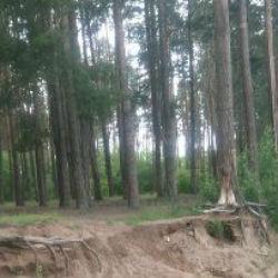 Следком раскрыл подробности дела о хищении земель в Татарстане