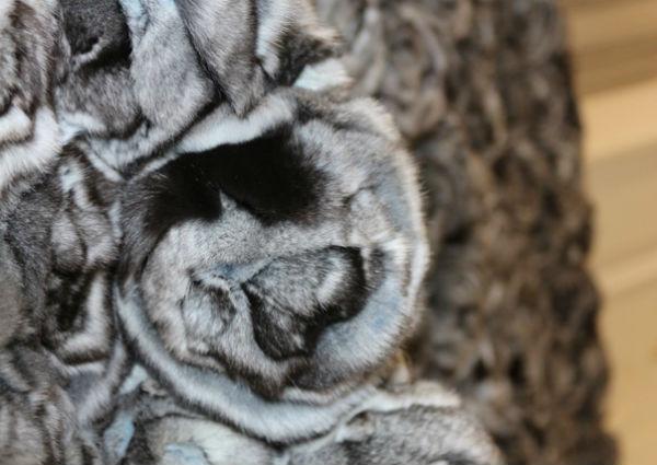 Дмитрий Стариков: Как выбрать качественную натуральную шубу из шиншиллы