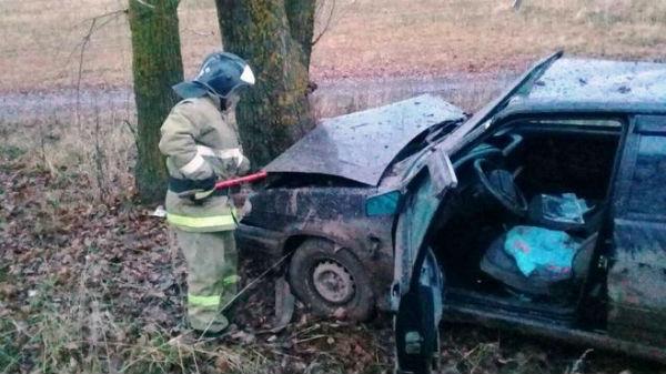 В Татарстане авто вылетело в кювет и врезалось в дерево, водитель пострадал (ФОТО)