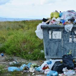 Госсовету Татарстана предложили запретить строительство мусоросжигательных заводов в городах