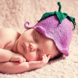 Госсовет РТ: В 2017 году рождаемость в Татарстане упала почти на 14 процентов