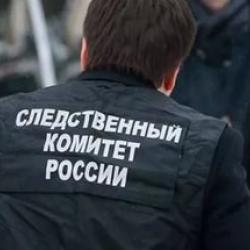 В Татарстане арестован предполагаемый насильник 8-летней девочки