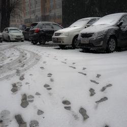 На Новый год жителей Казани ждет аномально теплая погода