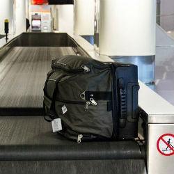 В аэропорту Казани таможенники изъяли шокирующий багаж (ФОТО)