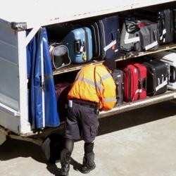 В аэропорту Красноярска у пассажира изъяли пакет с 10 кг костей мамонта