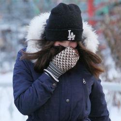 Придут ли сибирские морозы в Татарстан?