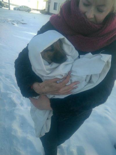 В Татарстане прохожие, спасая от смерти бедолагу, смогли поднять на руках автомобиль (ФОТО)