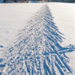 Территорию базы «Алмаш», где убили нижнекамскую лыжницу, каждый вечер патрулирует полиция на снегоходе