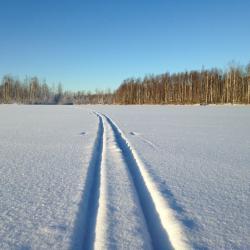 В Казани задержали мужчин, которые под видом лыжников делали «закладки» амфетамина на лыжне