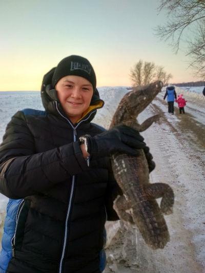В Башкирии у дороги нашли замерзшего крокодила (ФОТО)