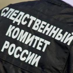 Под Хабаровском найден пакет, в котором находилось 26-28 пар отрубленных кистей рук