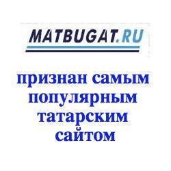 «Матбугат.ру» признан самым популярным татароязычным сайтом по статистике liveinternet