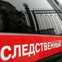 Жительница Татарстана подозревается в убийстве новорожденной дочери