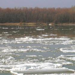 Уровень воды в Куйбышевском водохранилище Татарстана превысил норму на 3,5 метра