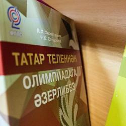 Власти Татарстана считают «недопустимым» принятие закона о добровольном изучении национальных языков