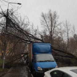 Ураган в Москве: двое погибших, десятки пострадавших и сотни поваленных деревьев (ФОТО)
