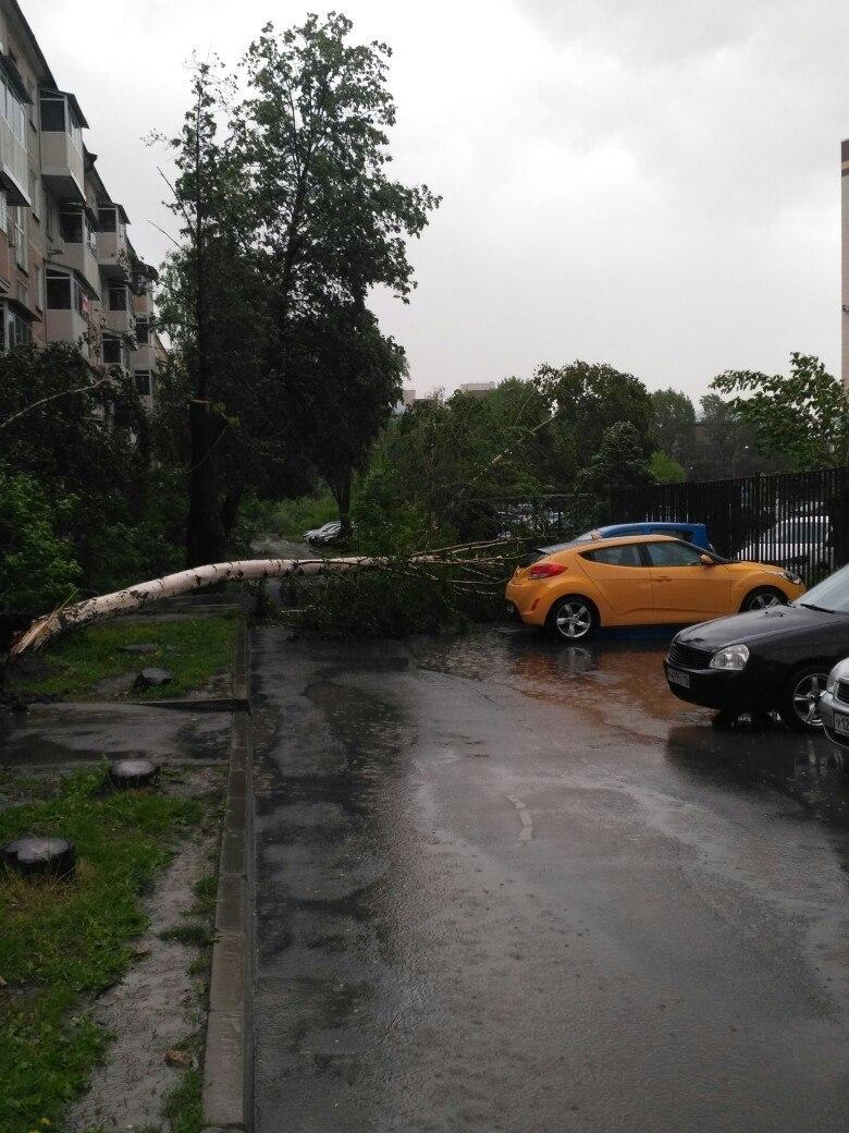 Ураган в Татарстане: поваленные деревья, сорванные крыши (ФОТО, ВИДЕО)