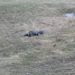 В Татарстане появились первые жертвы мотосезона (ВИДЕО)