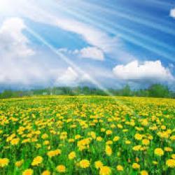 Летнее тепло возвратится в Татарстан к среде