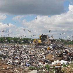 Нужен ли Казани мусоросжигательный завод?