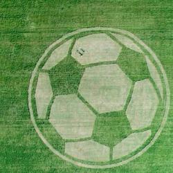 Спутники ГЛОНАСС заметили огромный футбольный мяч на поле в Татарстане (ФОТО)