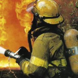 В Челнах подожгли коттедж экс-депутата