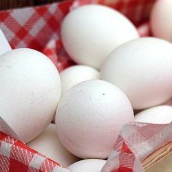 В Татарстане отменили всероссийский яичный фестиваль из-за птичьего гриппа