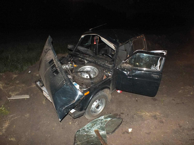 В ДТП с «Нивой» и гужевой повозкой в Татарстане погиб 58-летний мужчина (ФОТО)