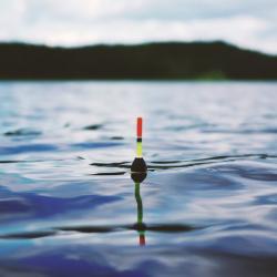 Президент Федерации рыболовства РТ анонсировал неизбежное повсеместное введение фишкарт