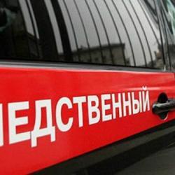 СК задержал экс-начальника отдела опеки и попечительства Алексеевского района Татарстана