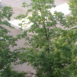 На месте смертельного ДТП в Нижнекамске за ночь появилась «зебра» — соцсети