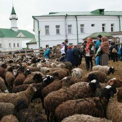 Курбан-байрам в Казани: все, что нужно знать о празднике