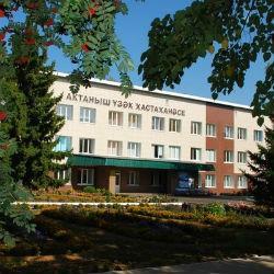 Из Актанышской ЦРБ выписали больше 20 отравившихся детей
