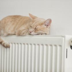 Где в Казани на этой неделе включат отопление