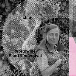 Фестиваль SHNIT CINEMAS пройдет в кинотеатре «Мир»
