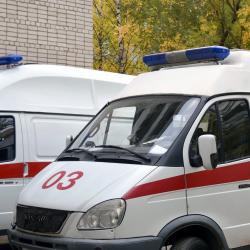 Арестованный житель Татарстана отрезал себе половой орган в конвойной машине