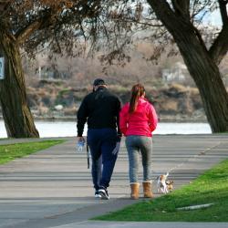Жительница Казани во время прогулки с собакой обнаружила человеческие останки