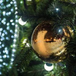 Какой будет «Зима в парках» и когда откроют главную елку Казани